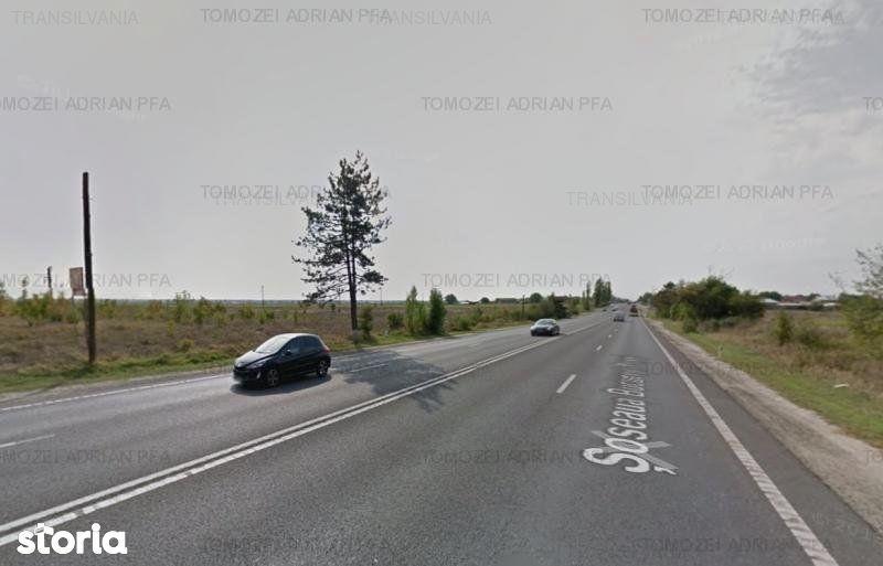 Teren de Vanzare, Tancabesti, Bucuresti - Ilfov - Foto 9