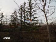 Teren de Vanzare, Iași (judet), Ciorteşti - Foto 7