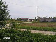Teren de Vanzare, Ilfov (judet), Ciolpani - Foto 7