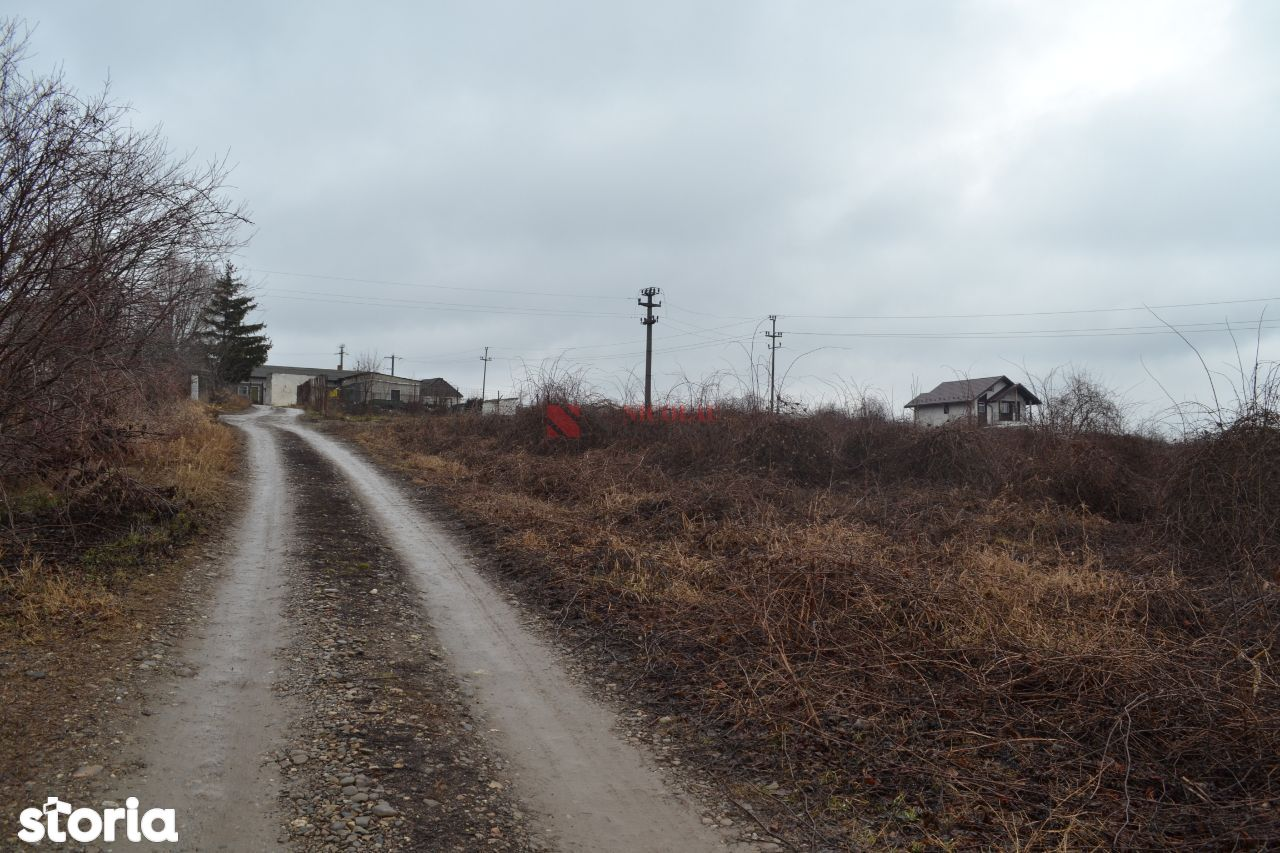 Teren de Vanzare, Iași (judet), Iaşi - Foto 5