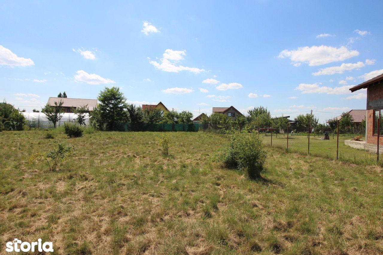 Teren de Vanzare, Timiș (judet), Drumul DJ609F - Foto 7