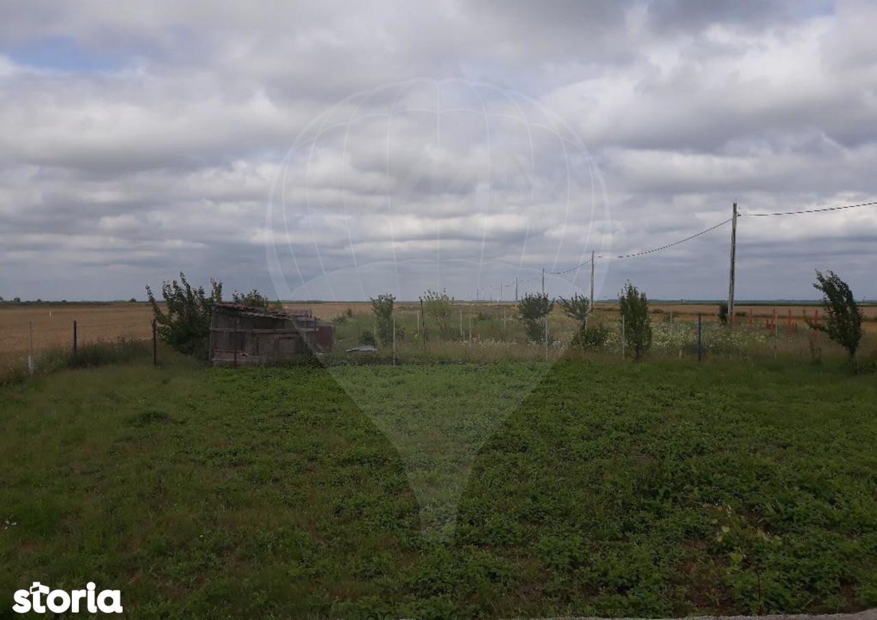 Teren de Vanzare, Livada de Bihor, Bihor - Foto 1