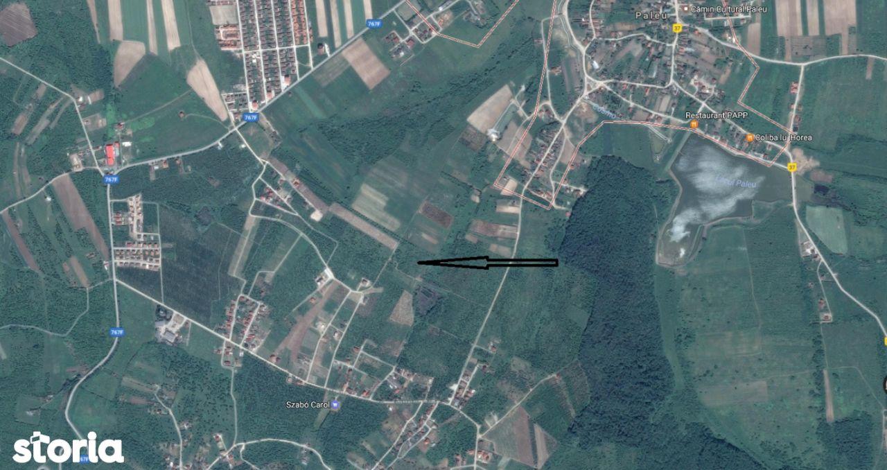 Teren de Vanzare, Bihor (judet), Paleu - Foto 1