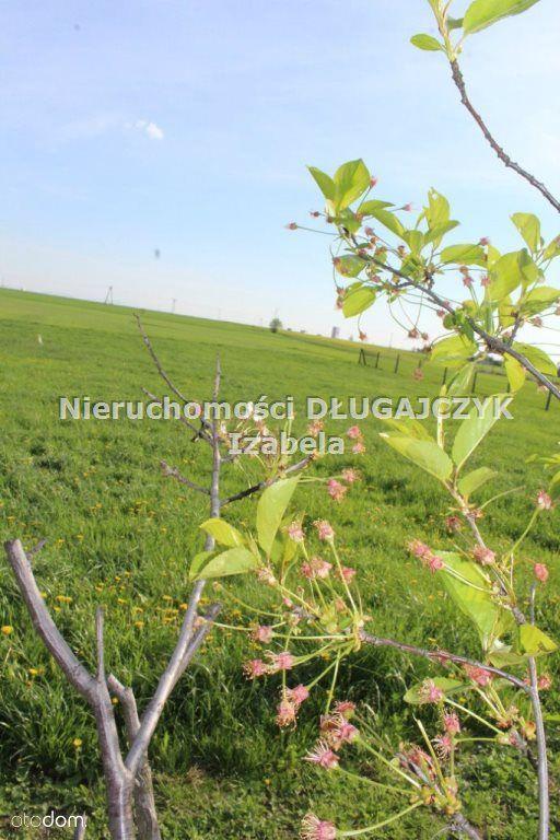 Działka na sprzedaż, Żory, śląskie - Foto 3