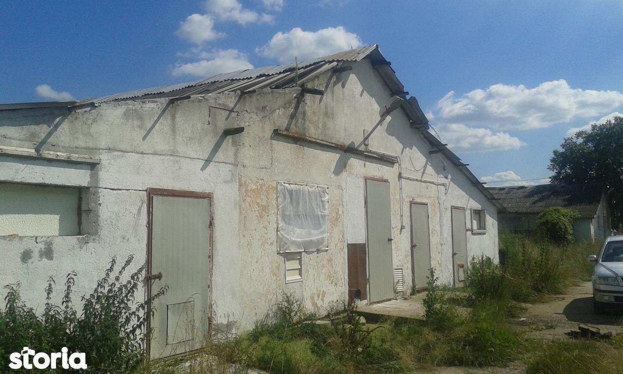 Depozit / Hala de vanzare, Caraș-Severin (judet), Berzovia - Foto 7