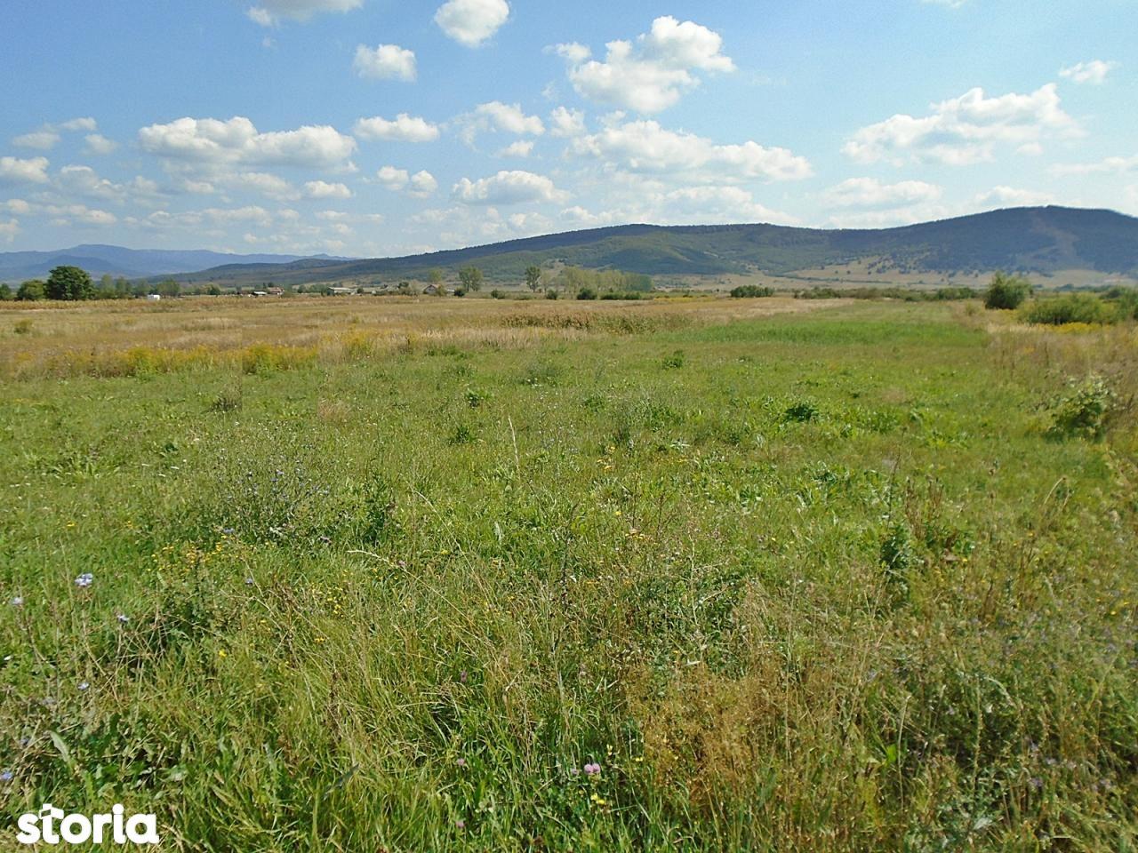 Teren de Vanzare, Bistrița-Năsăud (judet), Unirea - Foto 4