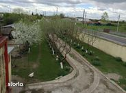 Teren de Vanzare, Giurgiu (judet), Gorneni - Foto 14
