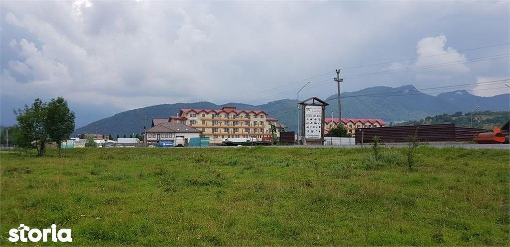 Teren de Vanzare, Brașov (judet), Tohanu Nou - Foto 1