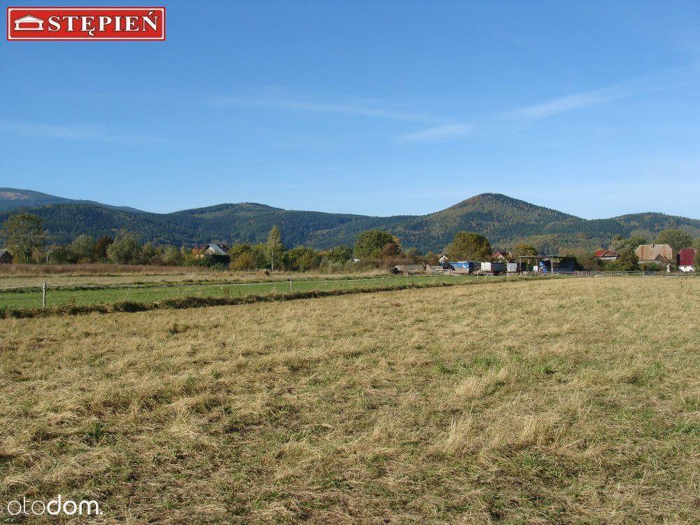 Działka na sprzedaż, Ściegny, jeleniogórski, dolnośląskie - Foto 9