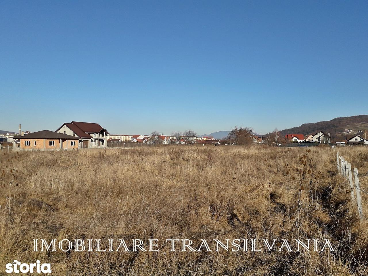 Teren de Vanzare, Bistrița-Năsăud (judet), Intrarea Prof. Haja Vasile - Foto 3