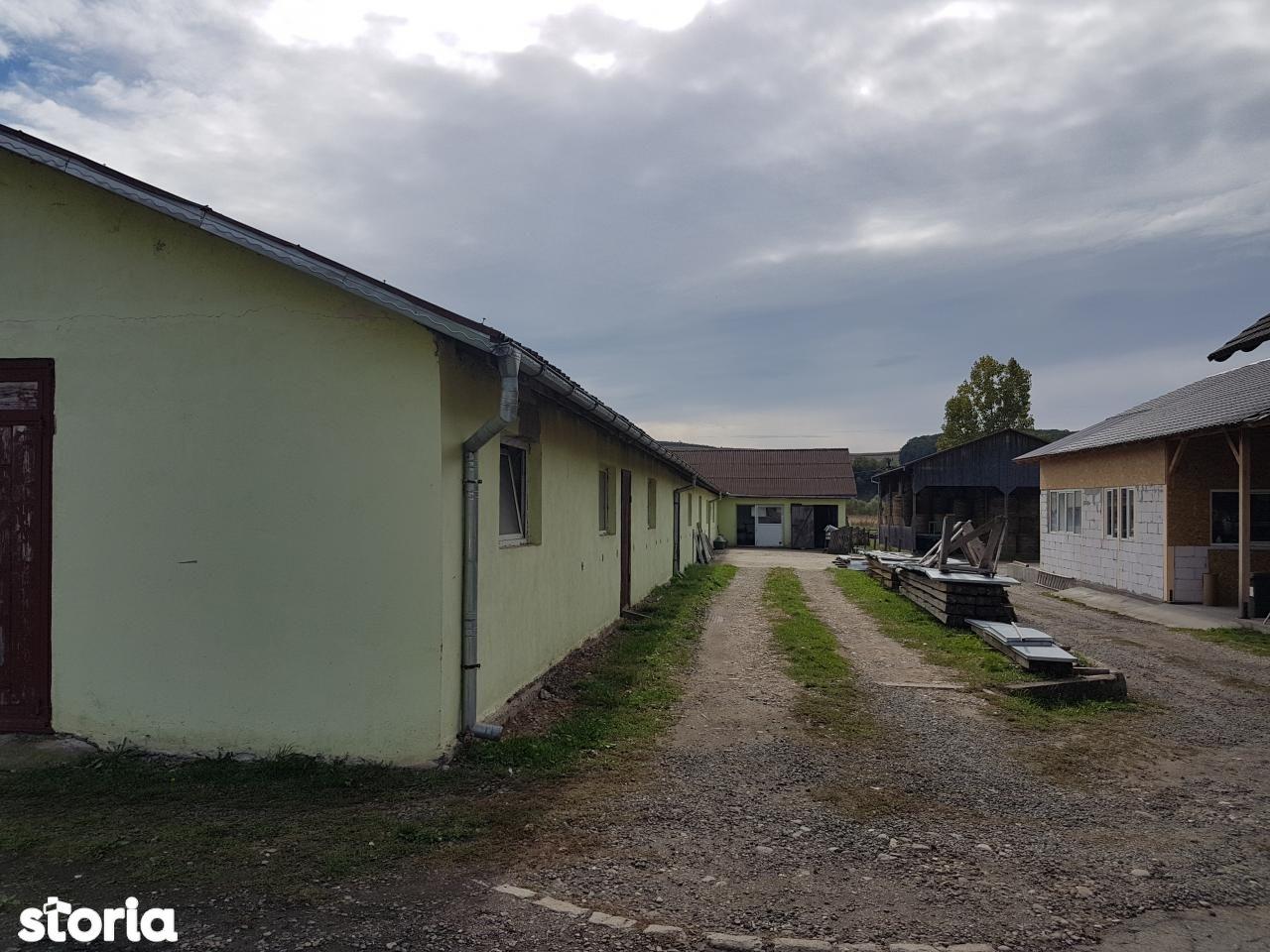 Depozit / Hala de vanzare, Bistrița-Năsăud (judet), Şieu - Foto 17