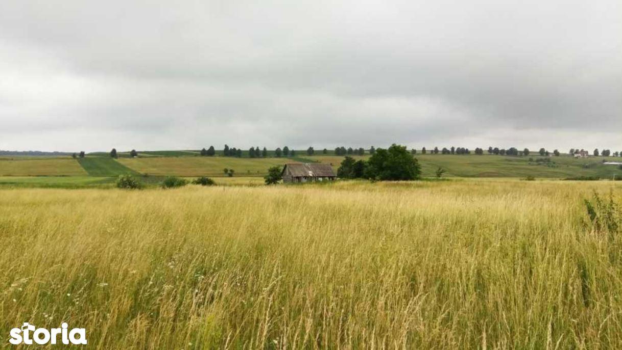 Teren de Vanzare, Suceava (judet), Lipoveni - Foto 1