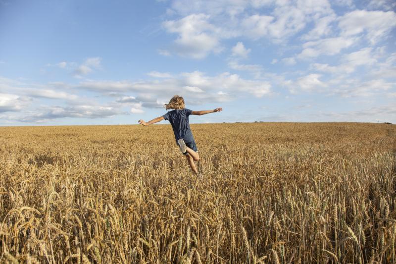 Ustawa o krztałtowaniu ustroju rolnego