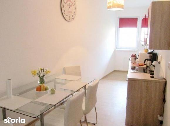 Apartament de inchiriat, Cluj (judet), Strada Dunării - Foto 9