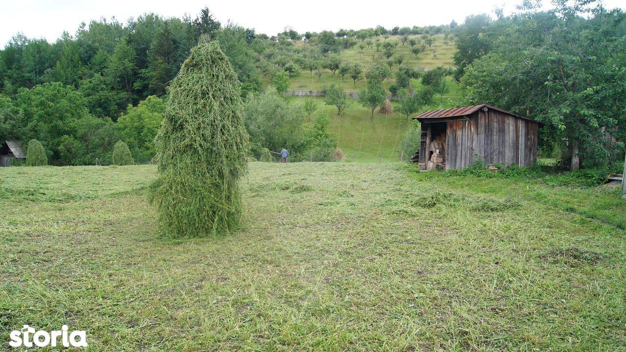Casa de vanzare, Neamț (judet), Bălţăteşti - Foto 12