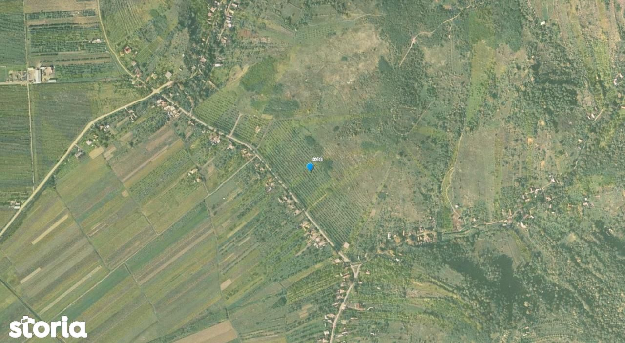 Teren de Vanzare, Seini, Maramures - Foto 2