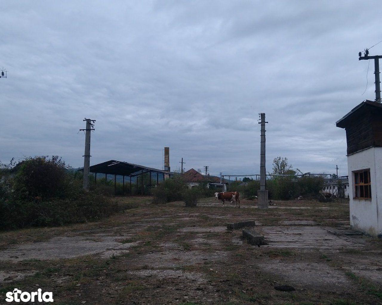 Teren de Vanzare, Maramureș (judet), Mireşu Mare - Foto 7