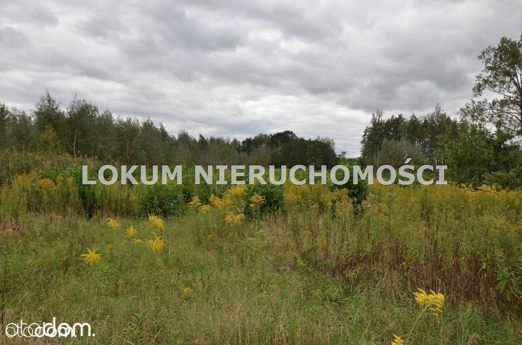 Działka na sprzedaż, Olesno, dąbrowski, małopolskie - Foto 6