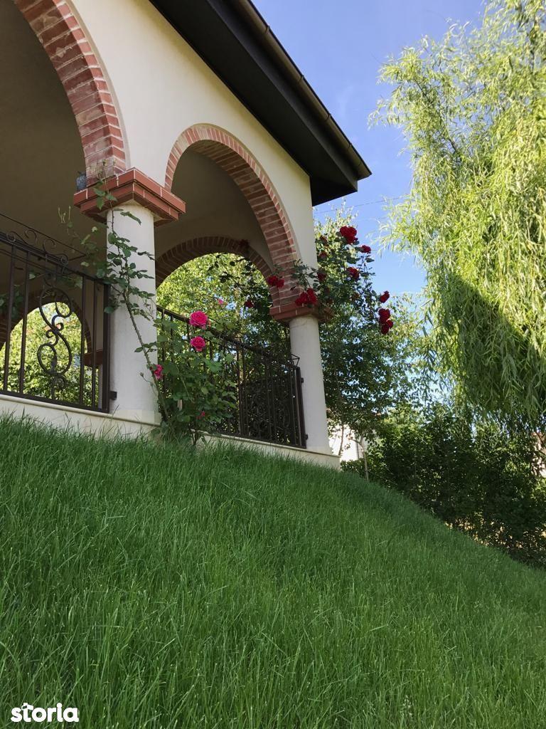 Casa de vanzare, Iași (judet), Podu Roș - Foto 11