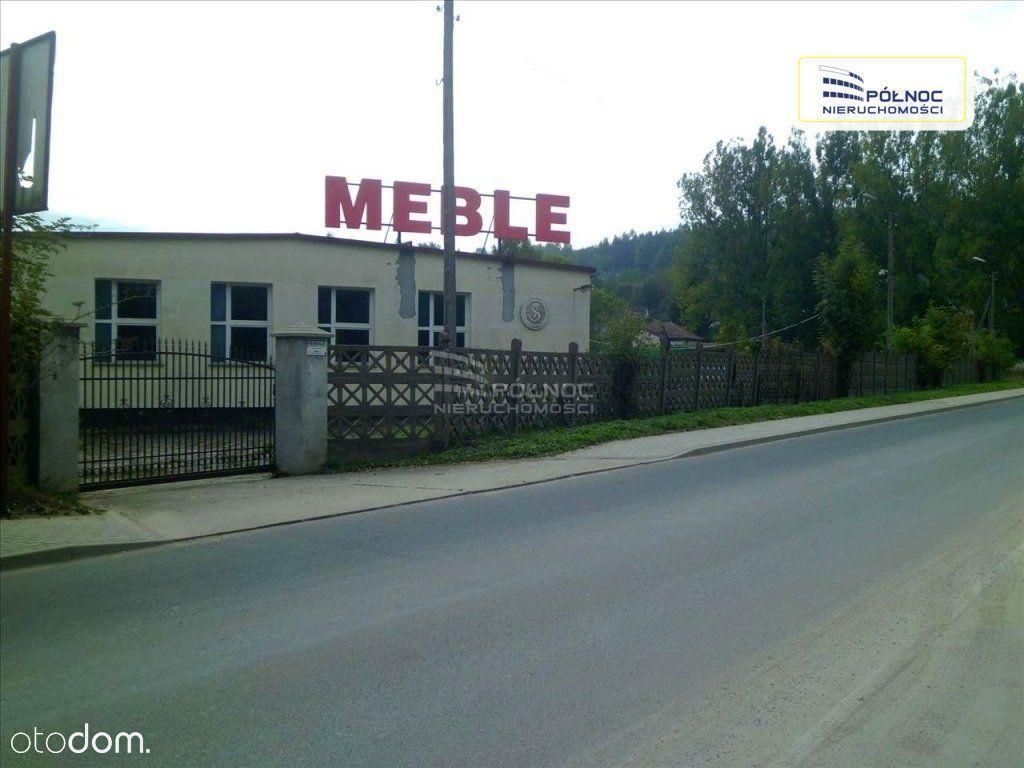 Hala/Magazyn na sprzedaż, Lwówek Śląski, lwówecki, dolnośląskie - Foto 1