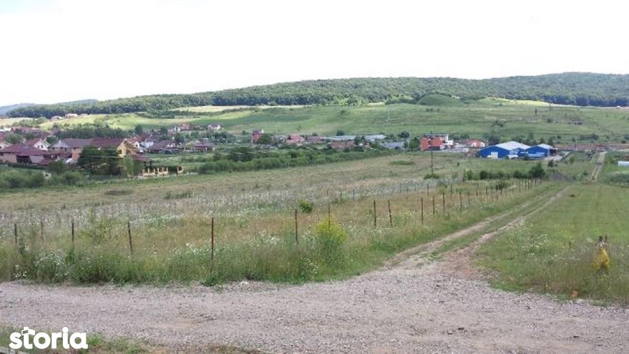 Teren de Vanzare, Mureș (judet), Orizont - Foto 4