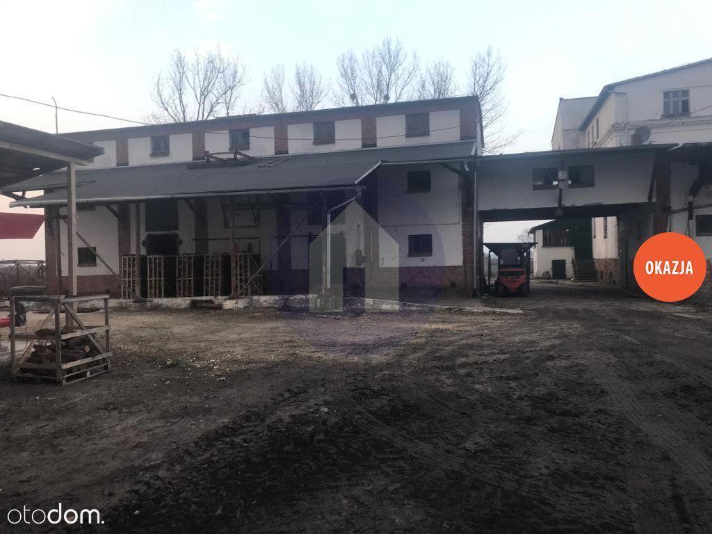 Lokal użytkowy na sprzedaż, Rajczyn, wołowski, dolnośląskie - Foto 1