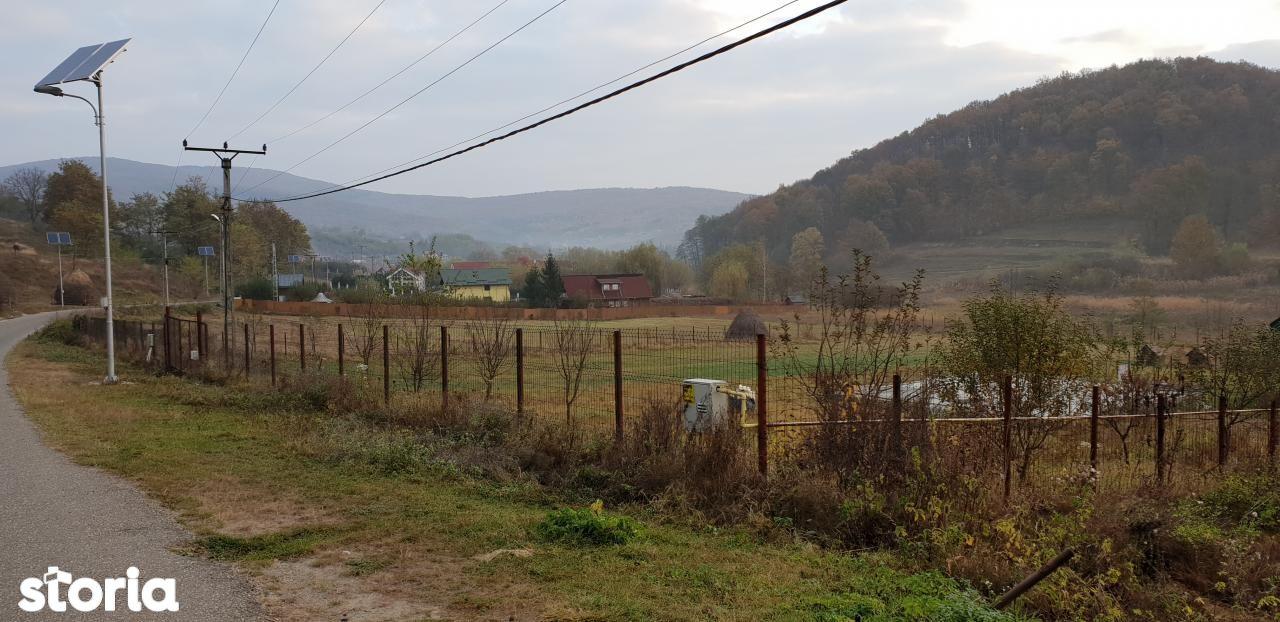 Teren de Vanzare, Bacău (judet), Bacău - Foto 2