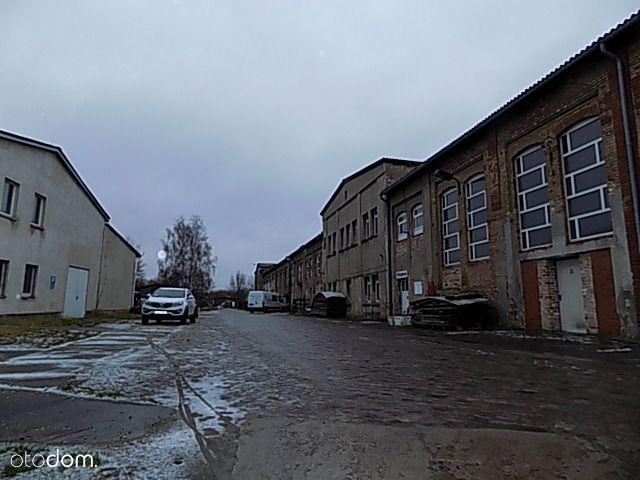 Hala/Magazyn na wynajem, Szczecin, zachodniopomorskie - Foto 7