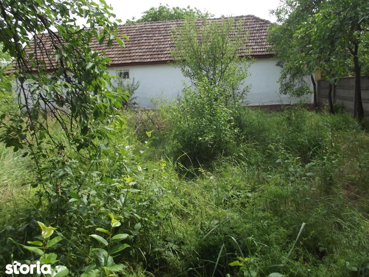 Casa de vanzare, Arad (judet), Felnac - Foto 10