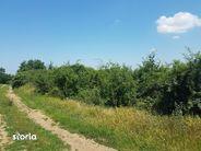 Teren de Vanzare, Bihor (judet), Paleu - Foto 6