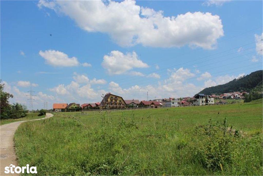 Teren de Vanzare, Brașov (judet), Săcele - Foto 10