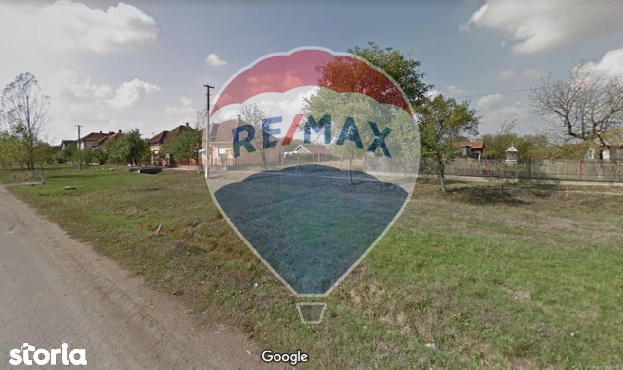 Teren de Vanzare, Satu Mare (judet), Homorodu de Jos - Foto 3