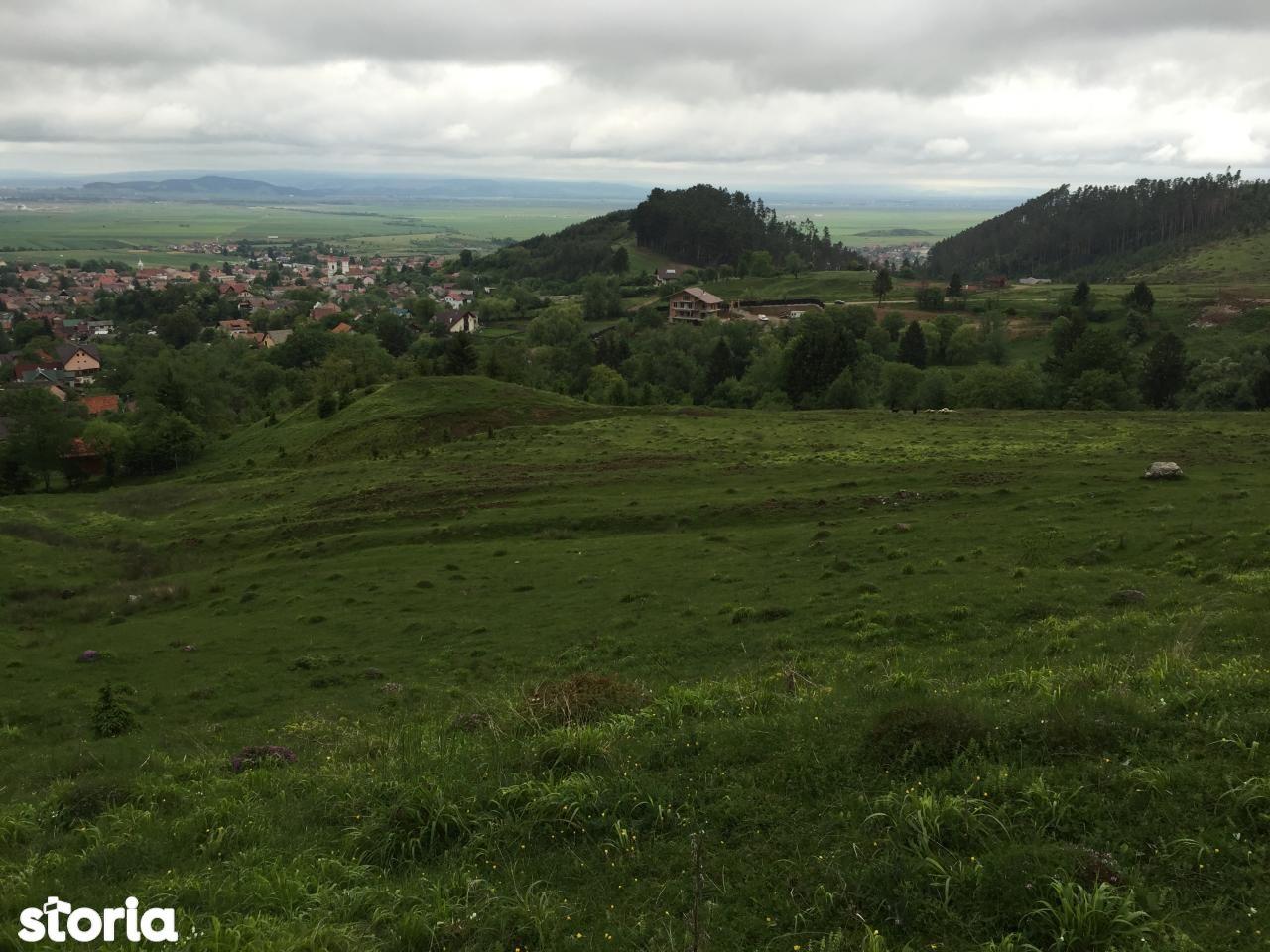 Teren de Vanzare, Timisu de Jos, Brasov - Foto 2