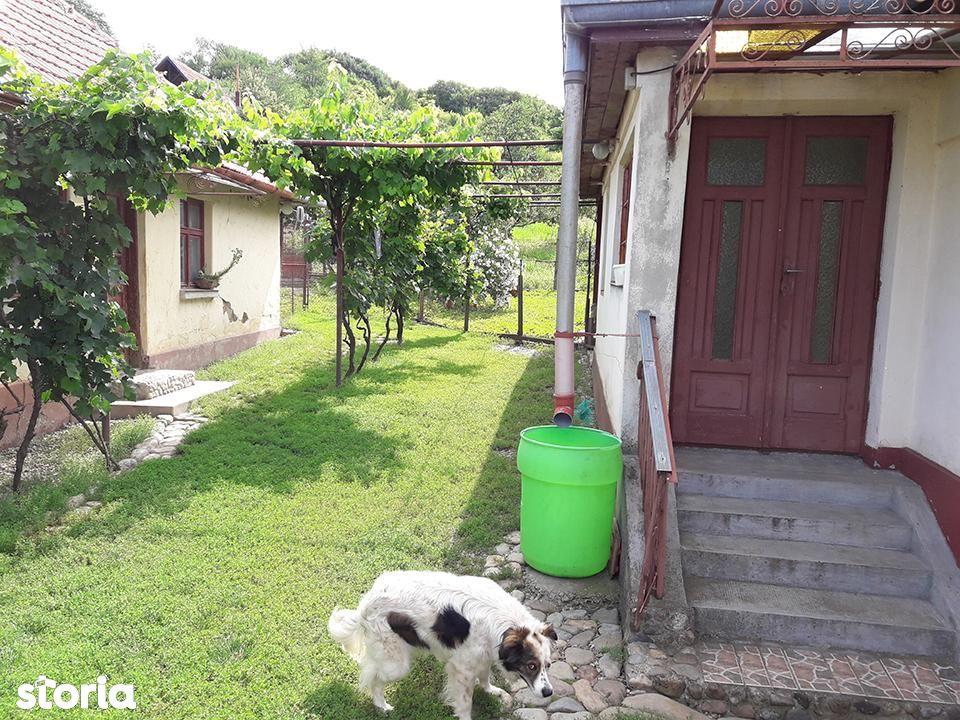 Casa de vanzare, Bihor (judet), Podgoria - Foto 6