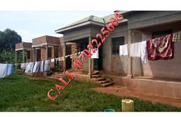 Superb 4 rental units for sale in Gayaza at 55m
