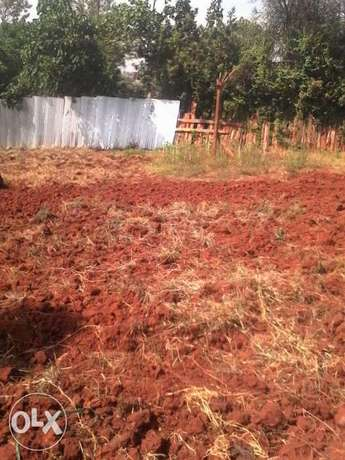 1/8 acre Plots for sale at Ruringu Skuta Ruringu - image 5