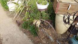 Wrought Iron Bicycle Plant holder - rusted J 1245