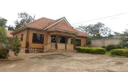 Elevated 3 bedroom bungalow for rent in Seeta-Town at 600k
