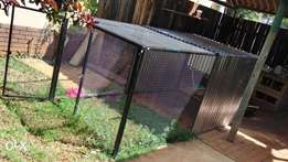 Chick cage for sale