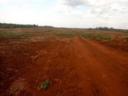 prime 1/8 acre plot in a gated community in thika (urithi housing)