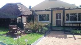 Spacious recently tiled three bedroom house for rent