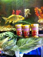 Acqurfin flakes Fish Food The royal pets