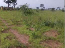 Plot of land for sale close to delsu campus 3 abraka