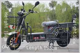 Heavy Load Electric Motorcycle