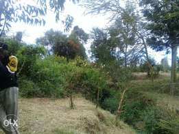 22 acres land for sale - ngobit