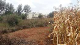 1/4 an acre for sale in Kerarapon