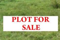 Prime 0.5 acres for sale in Parklands at 200M