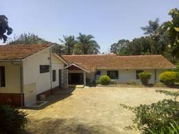 4 bedroom bungalow at Loresho to let