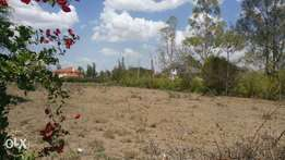 Ongata rongai ole kasaas half acre for sale
