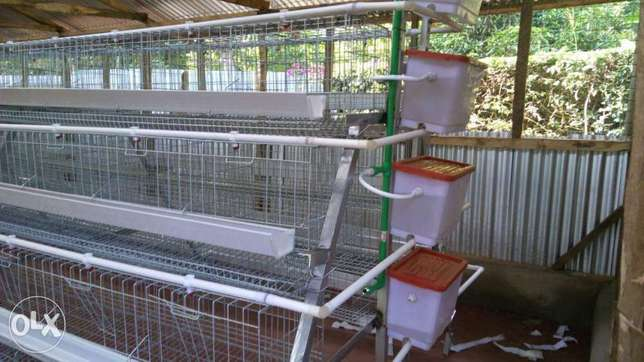 Chicken cages for layers Zimmerman - image 2